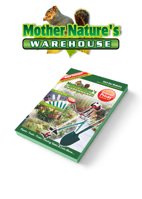 Graphic Design Booklet Design Mother Natures Warehouse